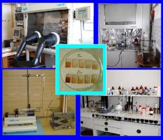 laborator_elch_materialu.JPG